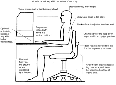 Having an ergonomic assessment allows your workstation to be modified to you, not vice versa.